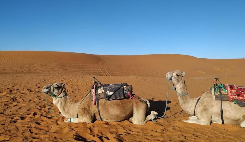 Noche en Sahara: Ana y Luis nos cuentan su viaje